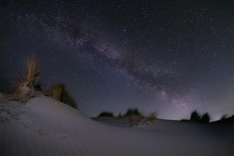 Melkweg in de duinen