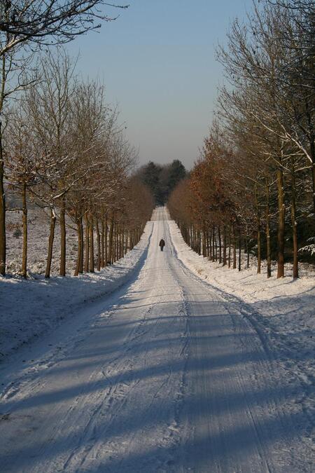 Eenzaam in de verte - - - foto door Arnos_zoom op 16-01-2009 - deze foto bevat: sneeuw, eenzaam, verte, landchap