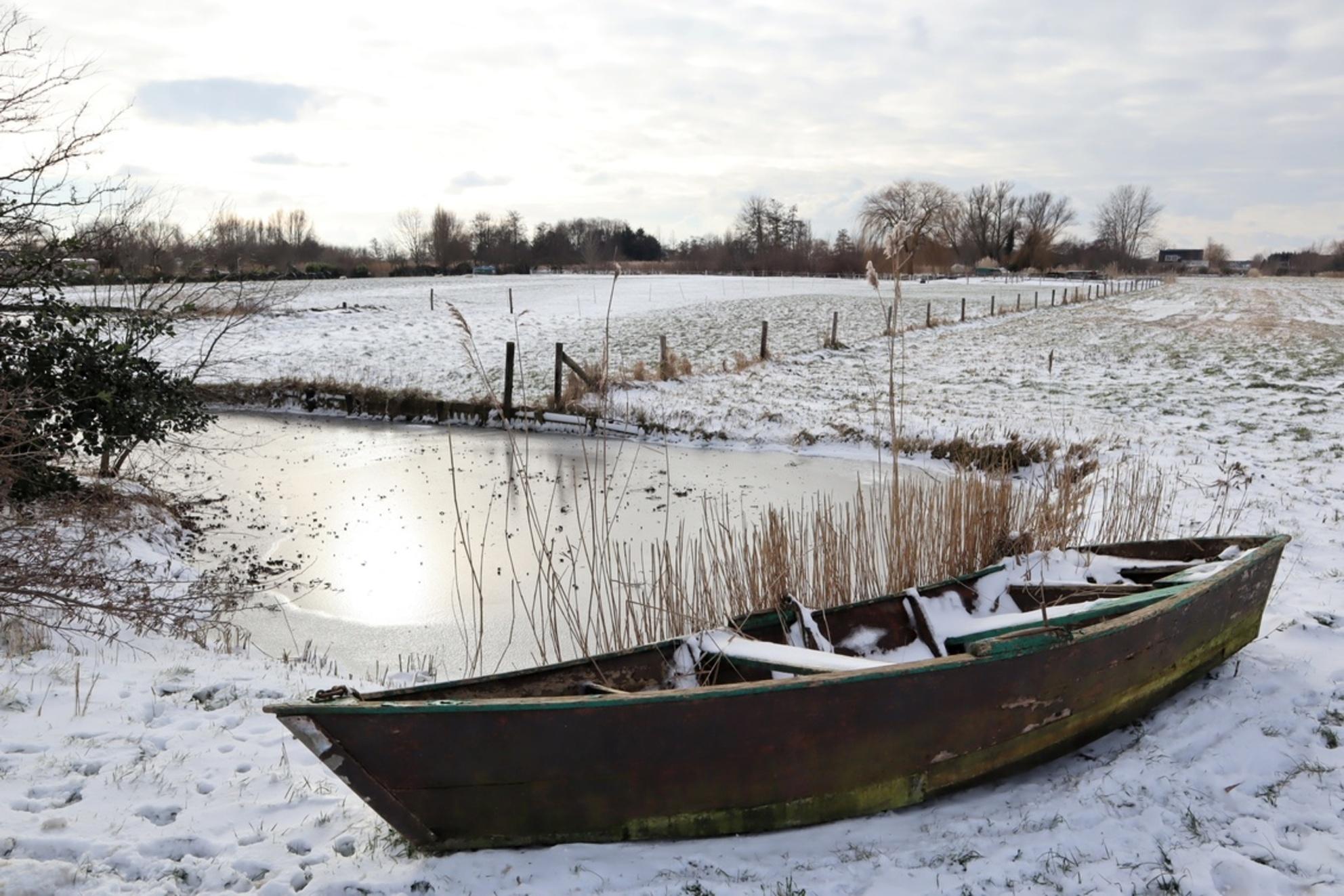 Winters tafereel - - - foto door DeniseClemens op 08-03-2021 - deze foto bevat: lucht, wolken, boom, natuur, sneeuw, winter, ijs, landschap, bos, tegenlicht, nederland - Deze foto mag gebruikt worden in een Zoom.nl publicatie