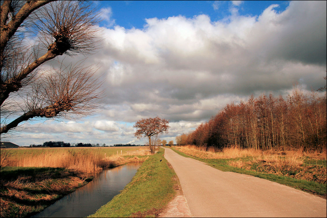 Gronings Landschap Oosterburen - Groningerlandschap , gisteren tijdens fietstocht vanaf hier : Oosterburen in Middelstum - foto door Teunis Haveman op 20-03-2021 - deze foto bevat: lucht, wolken, natuur, licht, landschap, bomen
