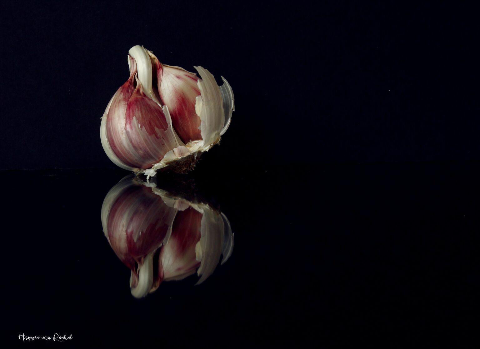 spiegeling - reflectie  - foto door crazydiamond op 09-04-2021 - deze foto bevat: reflectie, food, bloem, bloemblaadje, fabriek, terrestrische plant, olifant knoflook, knoflook, bloeiende plant, kruidachtige plant, ingrediënt, groente