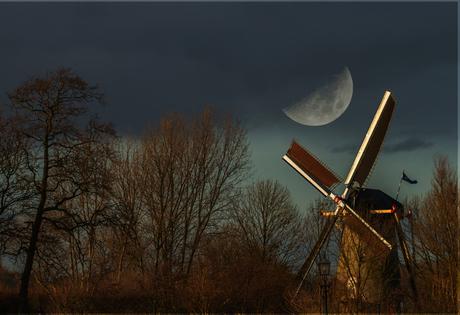 Moonlight serenade (project Inspiratie)