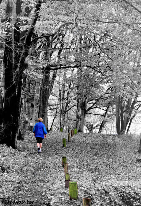 jogger in blue