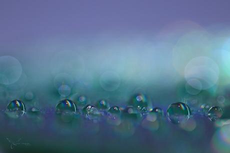 H2O on CD