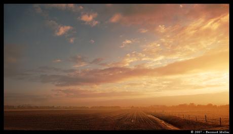 ~Morning Glory~