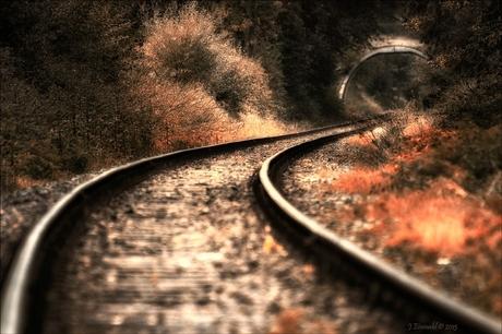 Herfst op het spoor.