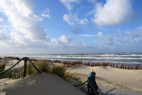 Strand Texel de Koog.jpg