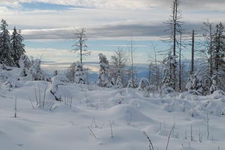 Winter Hofsgrund