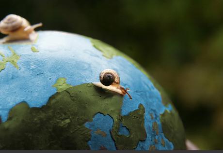 De slakken nemen de wereld over