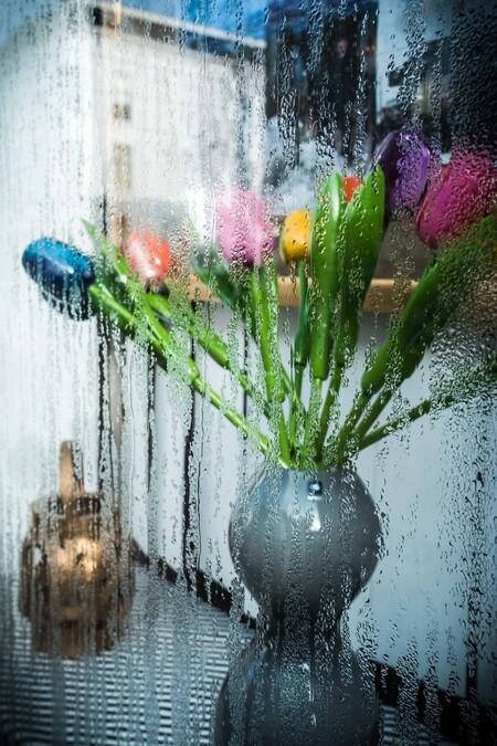 Tulpen, Den Haag - Nabij Hollands Spoor in Den Haag trof ik deze vaas met tulpen aan in een vitrine. - foto door andreas287 op 02-03-2021 - deze foto bevat: tulpen, stilleven, vaas, vitrine, Den Haag