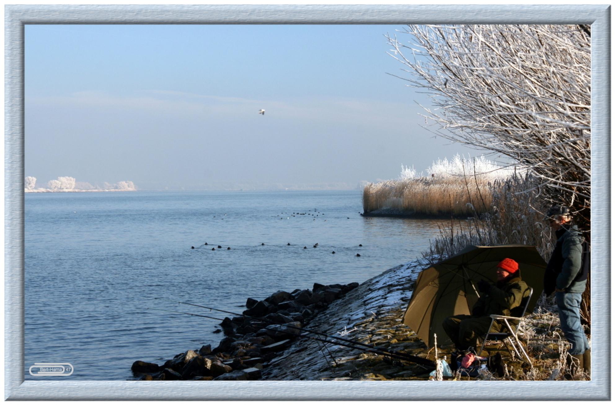 Winter 2009 De Visser in de Kou - - - foto door BertHama47 op 17-01-2009 - deze foto bevat: visser, berthama47, winter-2009