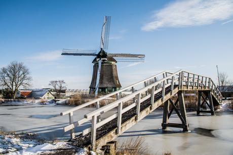 Hollands tafereel
