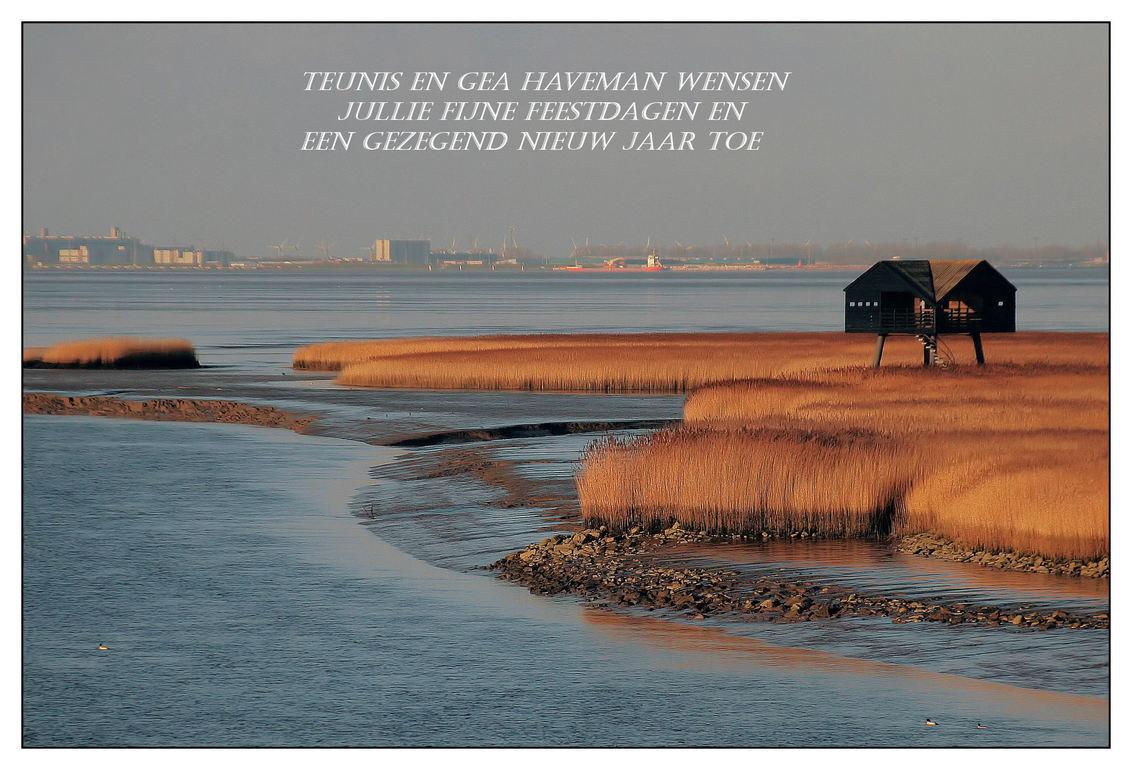 Wenskaart kiekkast - Voor onze Zoomvrienden - foto door Teunis Haveman op 21-12-2019 - deze foto bevat: wenskaart