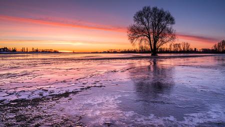 Smeltend ijs - Het ijs op de ondergelopen uiterwaarden kraakt en piept en is nu langzamerhand aan het dooien. Vanmorgen, nog voor zonsopkomst en met -6 lag er nog  - foto door marielledevalk op 14-02-2021 - deze foto bevat: lucht, wolken, water, natuur, licht, winter, ijs, spiegeling, landschap, zonsopkomst, bomen, rivier, vorst, kleurrijk, uiterwaarden, polder, kou, ondergelopen uiterwaarden