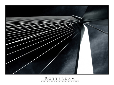 erasmusbrug_rotterdam