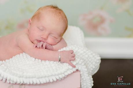 Newborn Indy