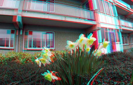 Daktuin Rotterdam 3D GoPro 40mm