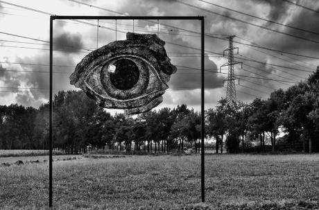 oog voor het landschap