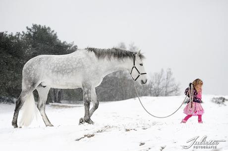 Klein meisje met wit paard