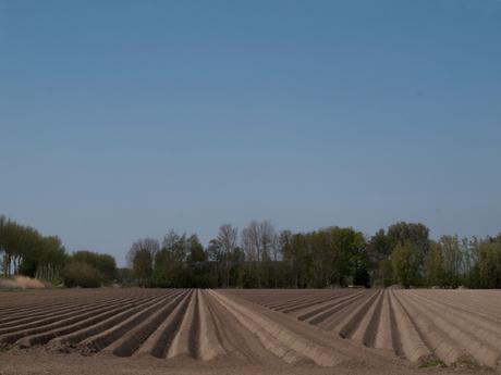 Patroon van landbouwvoren