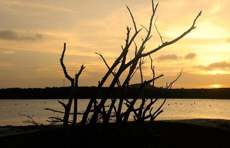 Sunset on a saltlake Jan Thiel