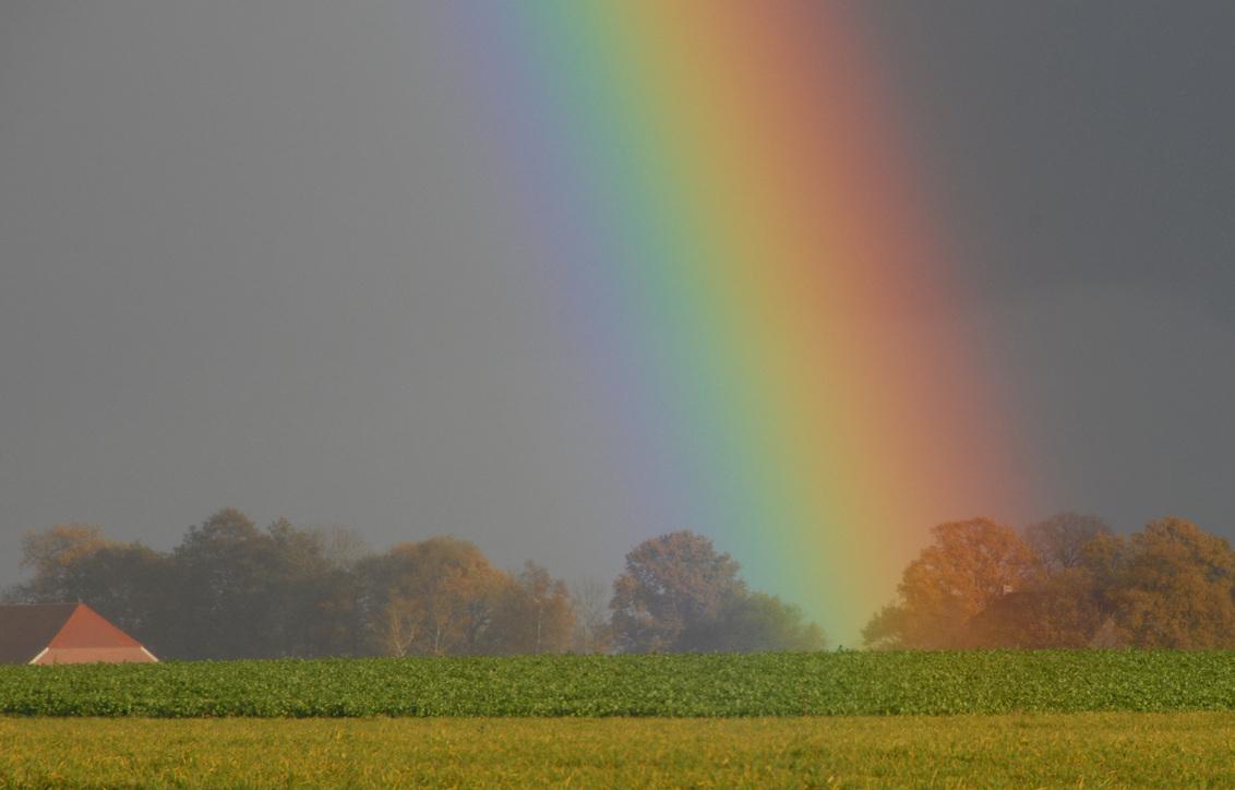 Regenboog 2 - Regenboog bij Onstwedde. Een uitloper ( een z.g. tange)van de Hondsrug  zorgt voor het glooiende landschap. Er is veel info over regenbogen, maar w - foto door johndegrooth op 14-11-2009 - deze foto bevat: regenboog, rainbow, hondsrug, onstwedde, John de Grooth