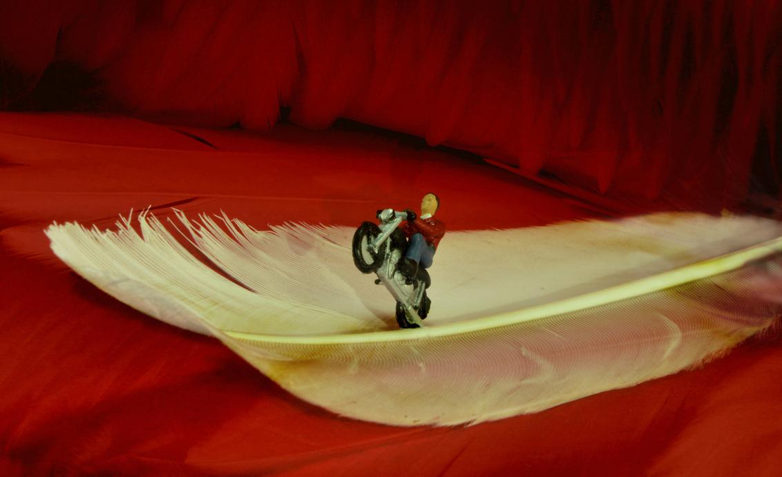 Evel Knievel 1 - Kleine mensen in een grote wereld. Daredevil Evel Knievel ready for the big jump. - foto door jopper op 04-11-2014 - deze foto bevat: rood, macro, wit, sport, veren, motor, mens, mini, jopper, knievel, evel