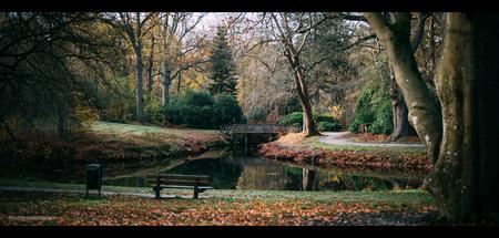 Park - Een park in de herfst. Leuk plaatje met het water en het bruggetje.    ©MotionMan 2020 - foto door motionman op 13-11-2020 - deze foto bevat: boom, uitzicht, bladeren, water, park, herfst, reflectie, bos, bomen, brug, kleurrijk, bankje, rust, leeg, herfstkleuren, friesland, sony, herfstbos, sfeervol, wijd, rustig, corona, scene, bosgezicht, oranjewoud, zeiss, scenic, overtuin, planar, sfer, scenisch, parkgezicht