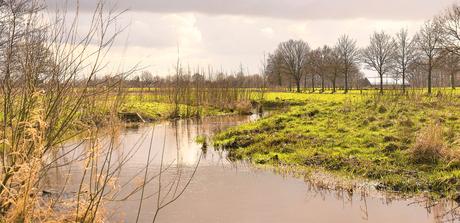 DSC_1695 Oude Bornsebeek ...