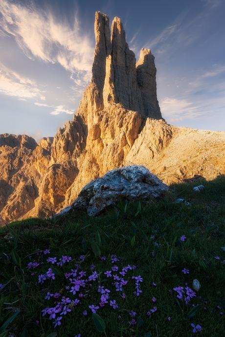 Berg met bloemetjes