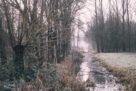 Regendruppels - In de regen kan je ook mooie foto's maken.  - foto door Judith van de Vecht op 10-04-2021 - deze foto bevat: fabriek, natuurlijk landschap, takje, hout, lucht, kofferbak, bevriezing, boom, bladverliezend, landschap