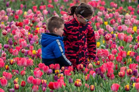 Kinderen en bloemen, prachtig toch