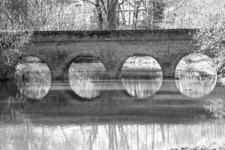 Spiegeling - De spiegeling in het water weergeven. - foto door Tasja op 13-04-2021 - locatie: 2570 Duffel, België - deze foto bevat: engeltje's fotografie, water, watervoorraden, natuur, hout, blad, afdeling, natuurlijk landschap, zwart en wit, architectuur, waterloop