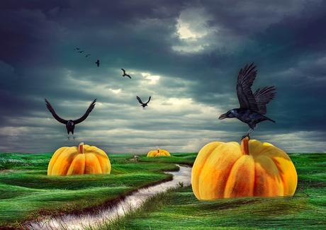 . . . Pumpkin World . . .