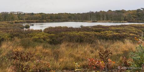 02275 Drenths landscape