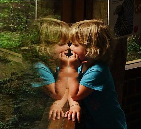 spiegelbeeld ..................