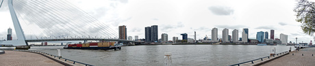 Skyline Rotterdam vanaf de Maaskade