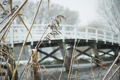 Winter '08 II