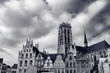 Mechelen Kathedraal