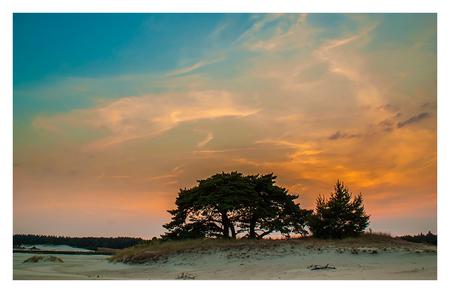 Hulsthosterzand at Sunset - Nog eentje van het Hulsthosterzand. 's Middags had ik al gekeken hoe de omstandigheden waren (zie 'vakantiegroet'). 's Avonds ben ik terug gegaan om  - foto door fotografie-2 op 24-07-2013 - deze foto bevat: sunset, landschap, zandverstuiving, hulsthorst, jkoppelaar, hulsthosterzzand, grijsfilter ND4