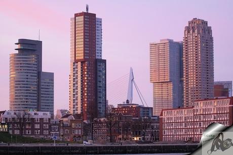 skyline van Rotterdam in de avond