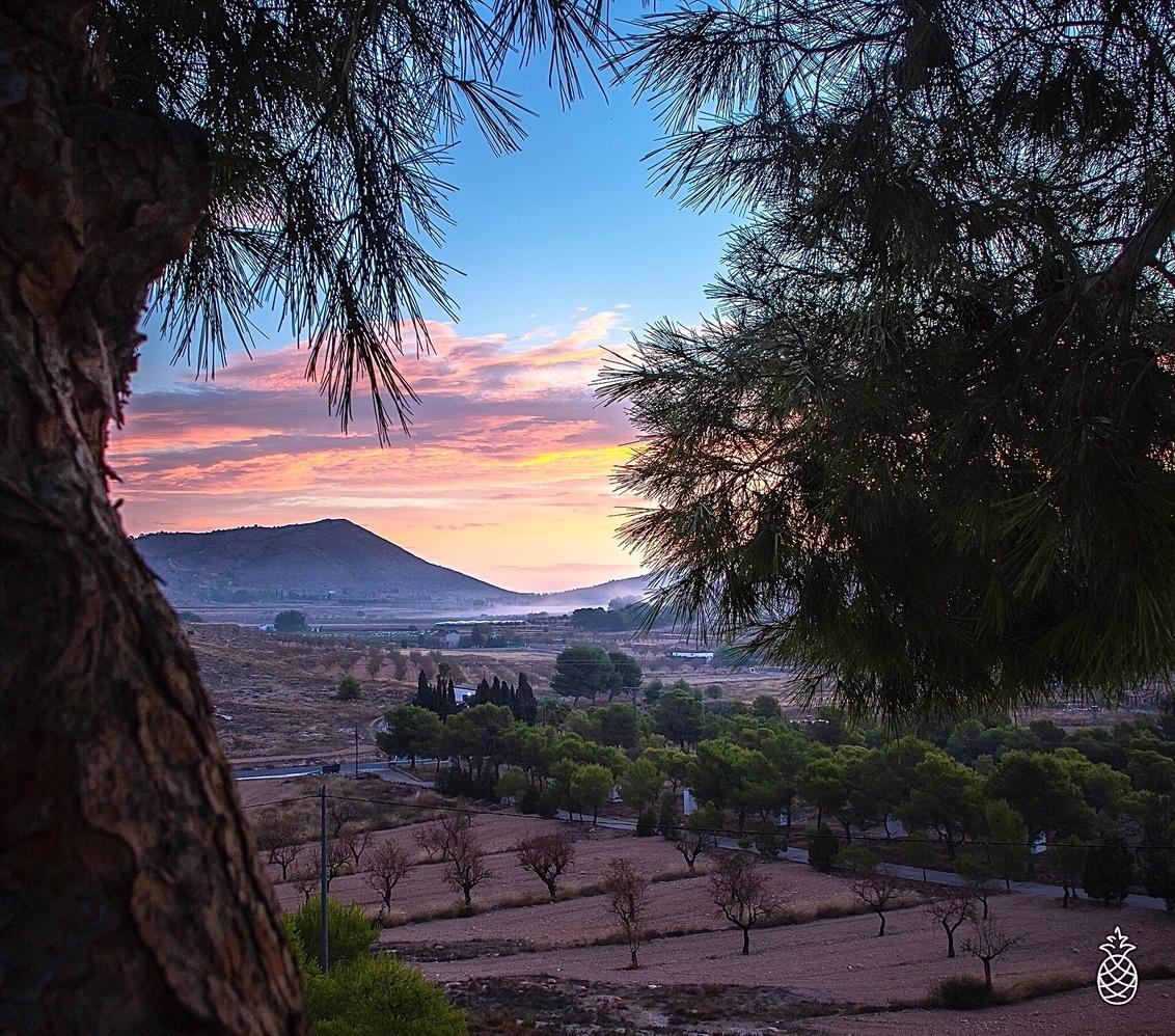 Colorful Morning.... - Onderweg naar vrienden toch maar even dit mooie moment meegenomen.. Er werd mist in de ochtend voorspeld, dus was een beetje voorbereid - foto door HenkPijnappels op 26-10-2020 - deze foto bevat: lucht, wolken, natuur, licht, herfst, landschap, mist, bos, tegenlicht, zonsopkomst, bomen, bergen