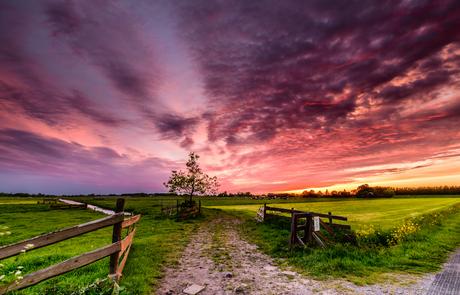 Geerpolder zonsondergang