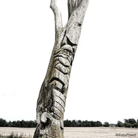 The tree of the viking
