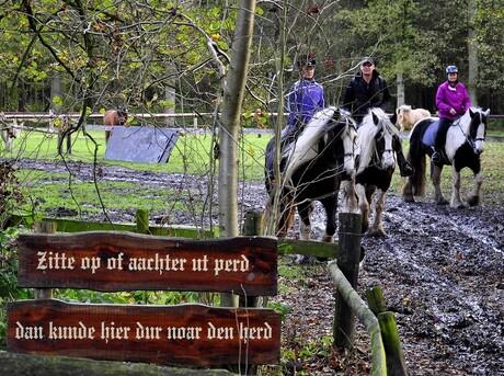 Herberg 'In den Bockenreyder', Esbeek (NB).