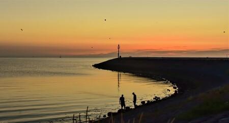 Haven Harlingen - na sail out Harlingen 2018--- 5 reigers  vlogen in het late licht ...en iedereen genoot  van het warme weer op zijn manier. na lange afwezigheid.... - foto door j.bosch.01 op 07-08-2018 - deze foto bevat: lucht, zon, strand, zee, water, licht, avond, zonsondergang, zand, kust
