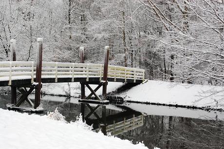 winter in Schiedam