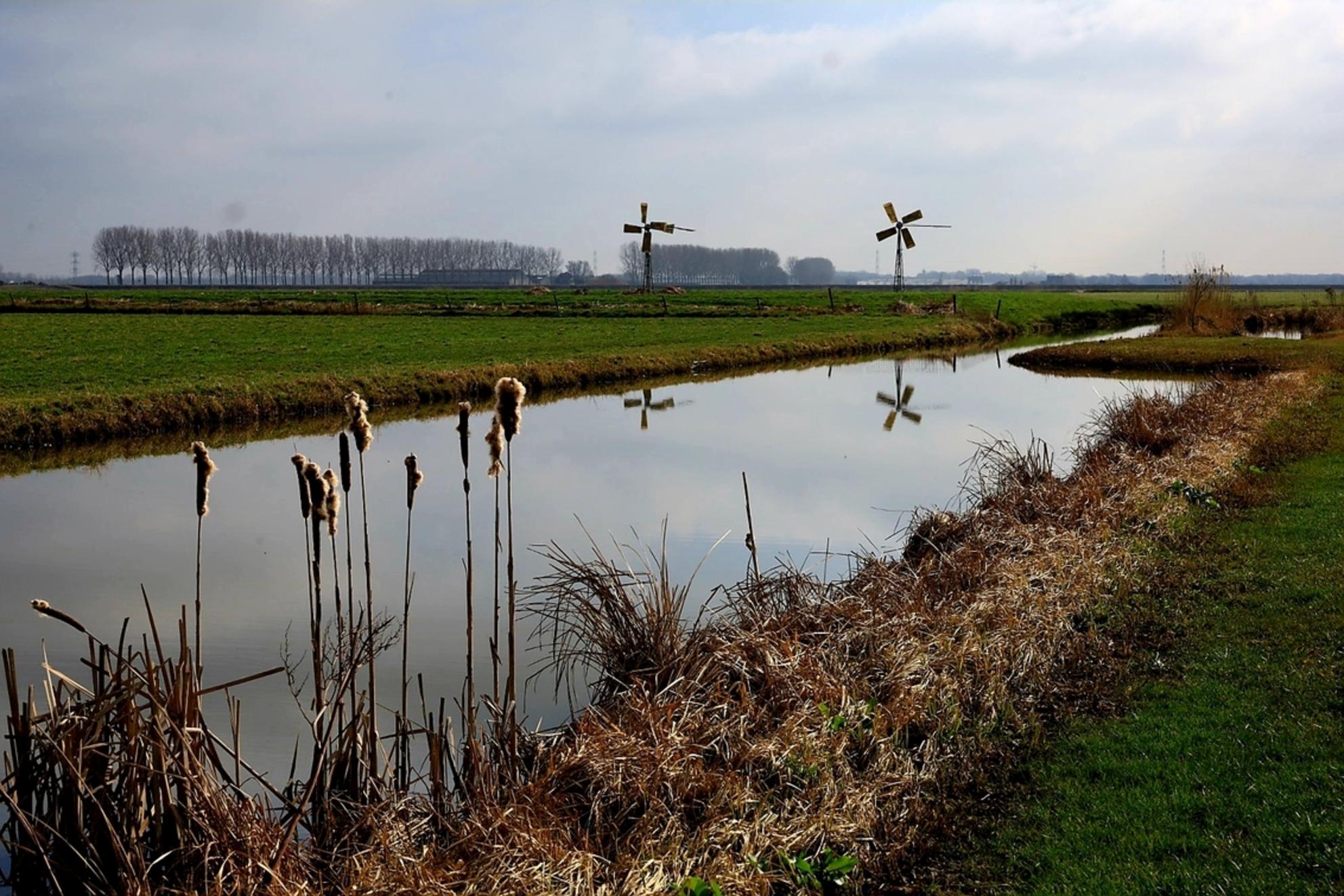 20210227_190719 - - - foto door Mounira op 27-02-2021 - Deze foto mag gebruikt worden in een Zoom.nl publicatie