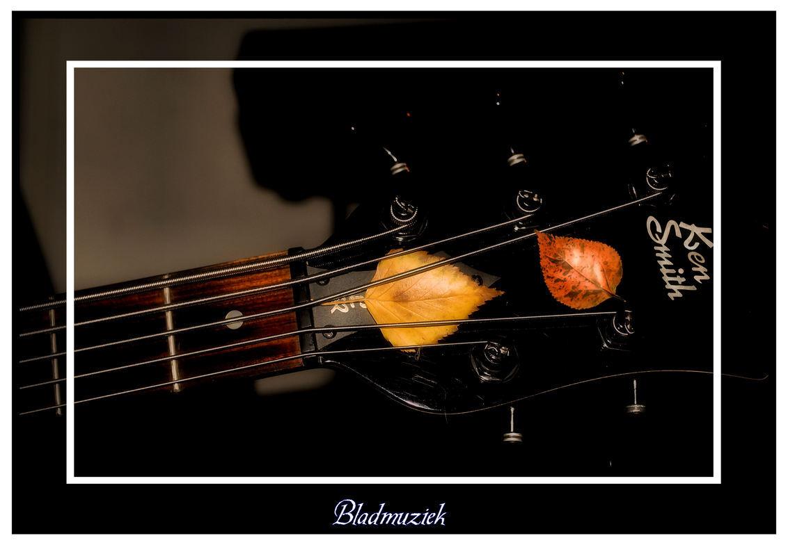 Bladmuziek - De basgitaar van manlief met een paar herfstblaadjes. (had ie er zelf tussengestopt hoor, heb het slechts vastgelegd op de plaat) - foto door spitsoor op 15-12-2009 - deze foto bevat: herfst, blad, basgitaar, muziek.