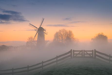 Een magische ochtend bij molen De Vlinder